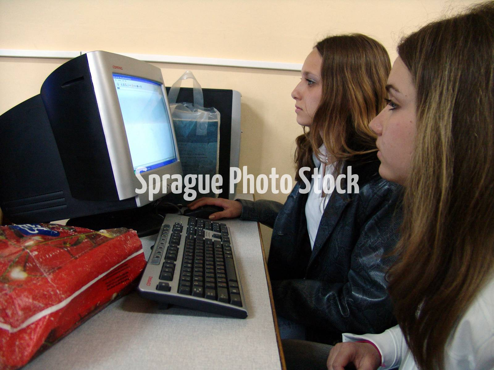 High school children using computers, Karlova, Bulgaria.